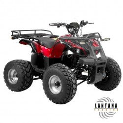 Vehículo motriz Quad H56152