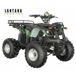 Vehículo motriz Quad H56150